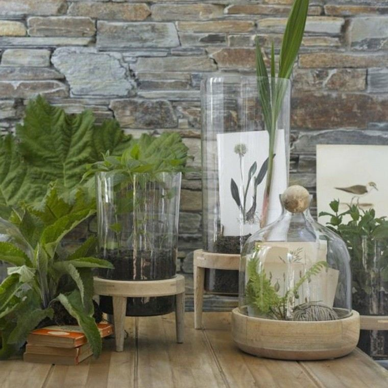 ideas decoracion diy plantas rocas envases