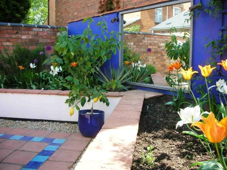 jardin mediterraneo limonero maceta azul ideas