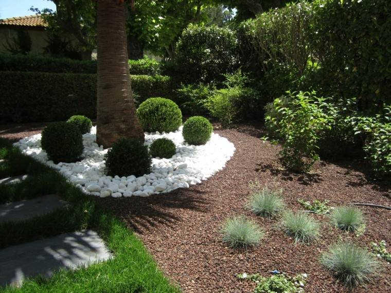 Plantas ornamentales jard n natural ideas preciosas for Pierre blanche decoration jardin