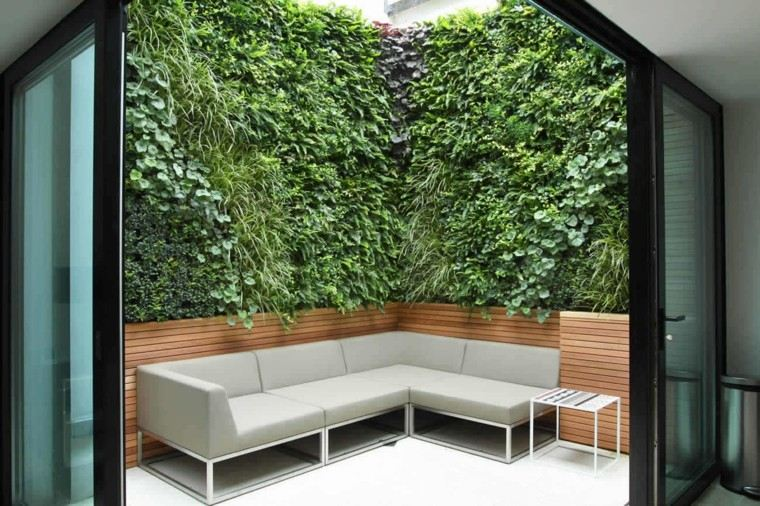 jardin pequeno sofa plantas precioso ideas