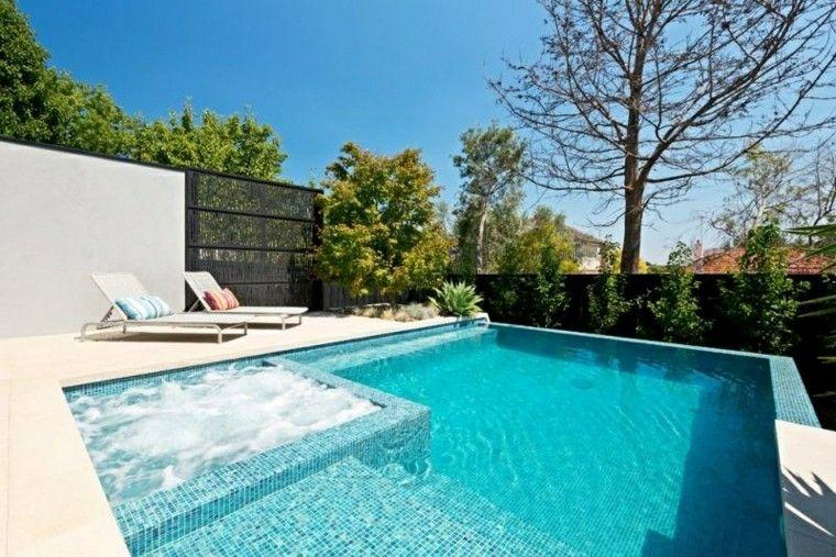 jardines piscina jacuzzi valla alta tumbonas ideas