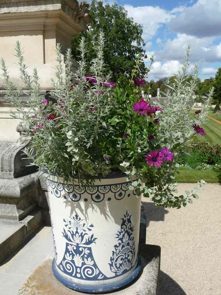 maceta preciosa plantas jardin moderno ideas