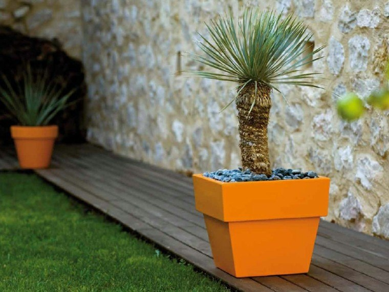 macetas color naranja vibrante palmera jardin ideas