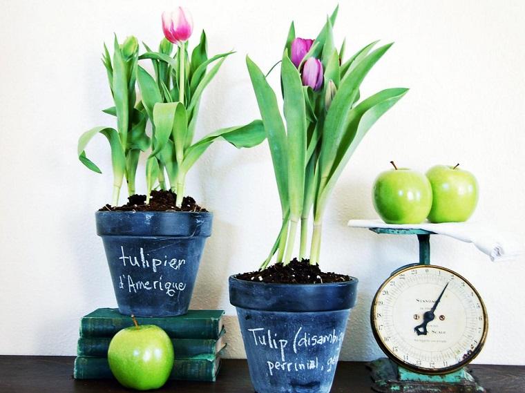 macetas decorar tulipanes aguantar tiempo ideas
