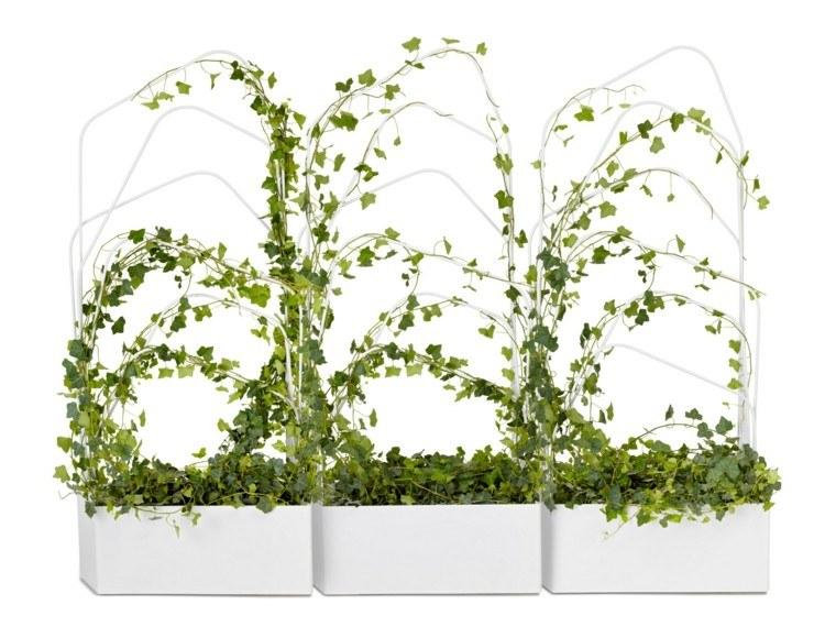 macetas preciosas plantas trepadoras color blanco moderna
