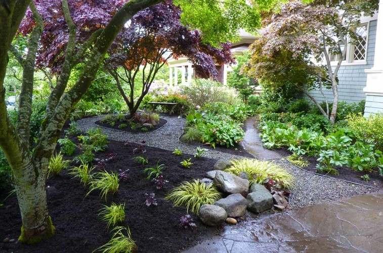 muchas plantas glorieta arbol sendero