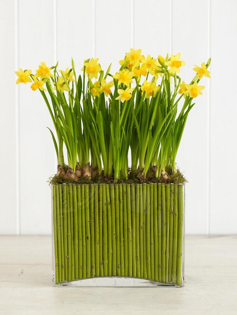 narcisos amarillos recipiente grande lleno tierra bambu ideas