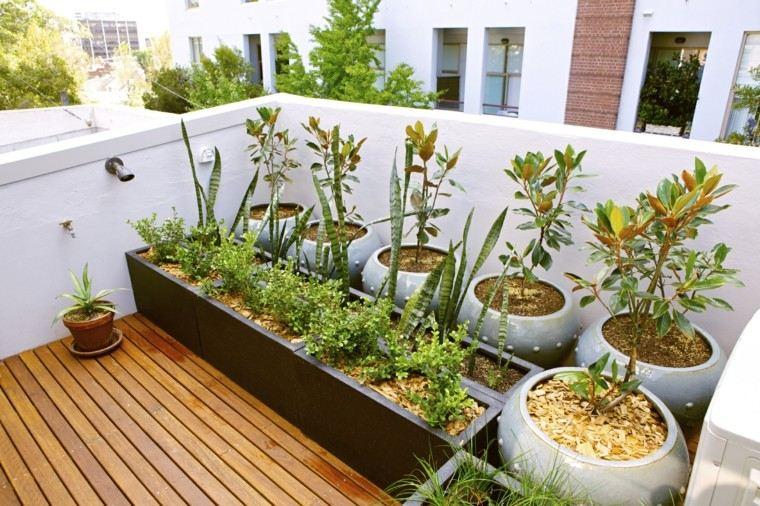 paisajimo moderno terraza plantas macetas