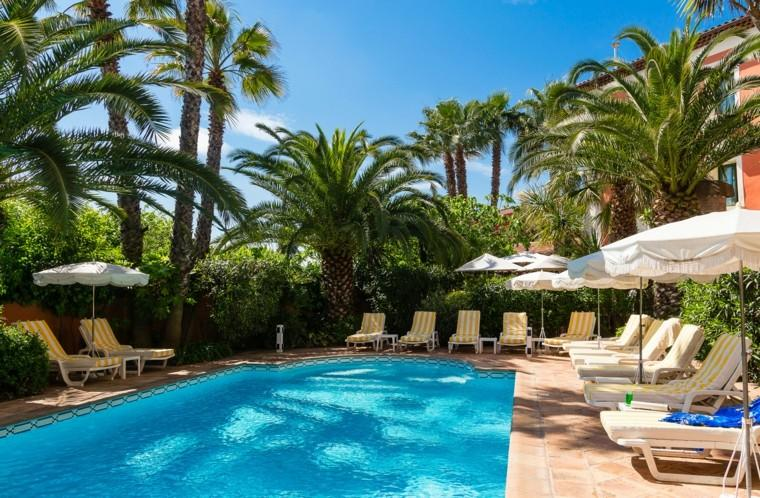 old palm trees exotic blue loungers