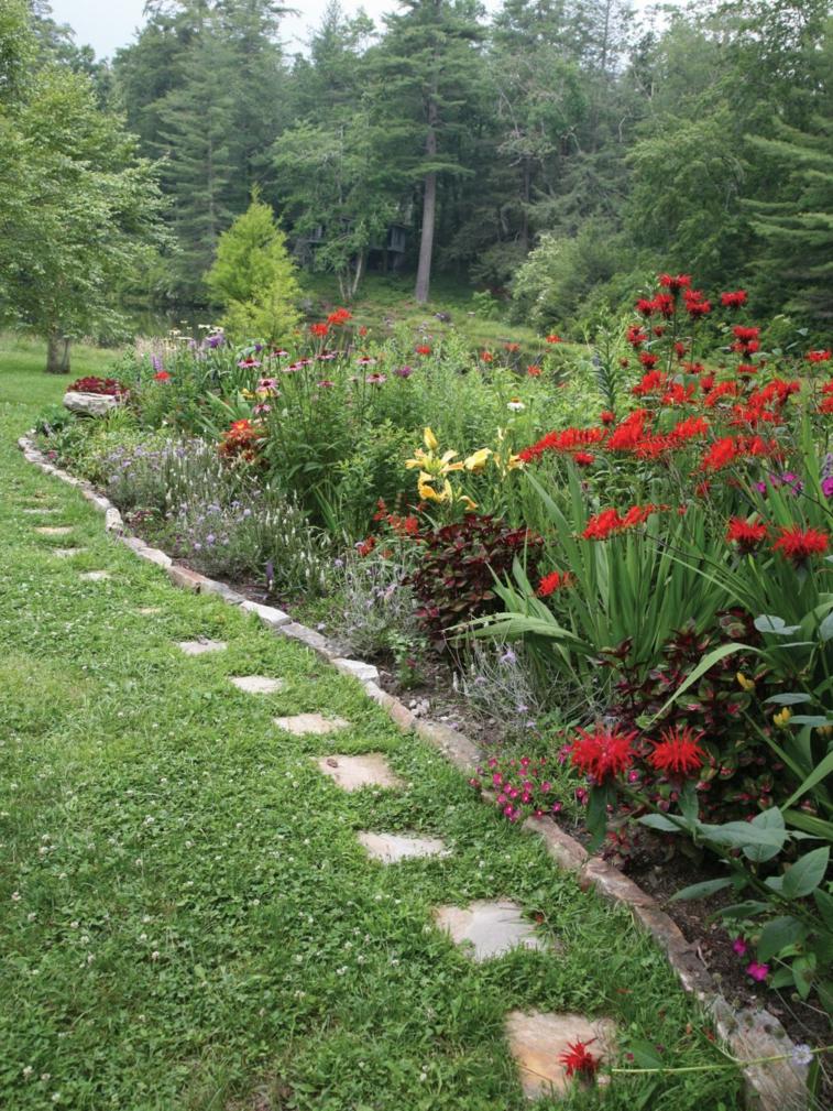 pequeño camino borde plantas cuadradas