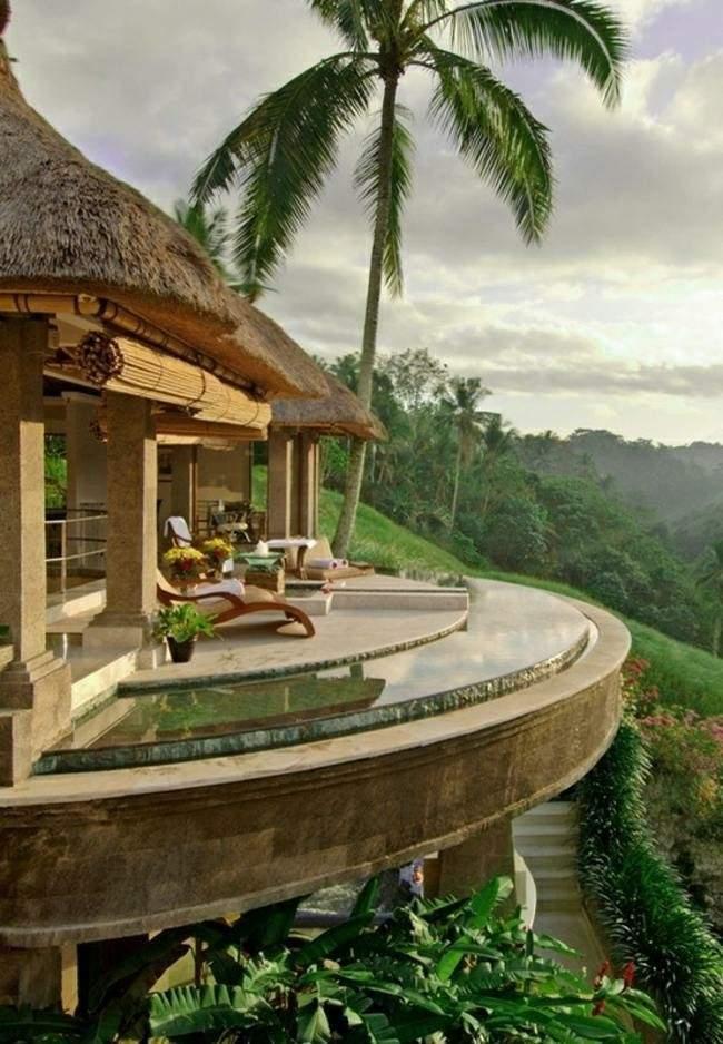 piscina borde terraza palmera vistas