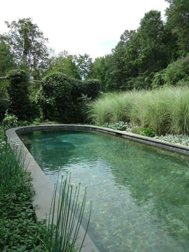 piscina forma redondeada huevo verde