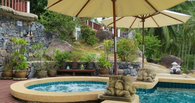 piscina jacuzzi jardin sombrillas macetas ideas