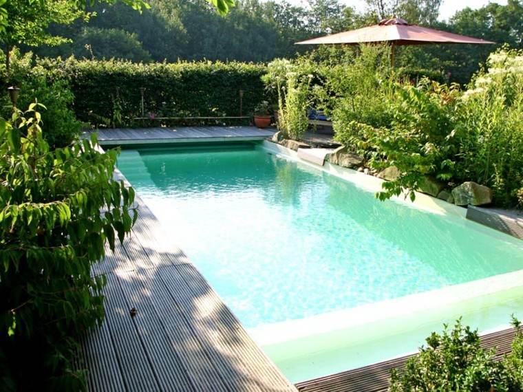 piscinas diseño vegetacion abundante sombrilla