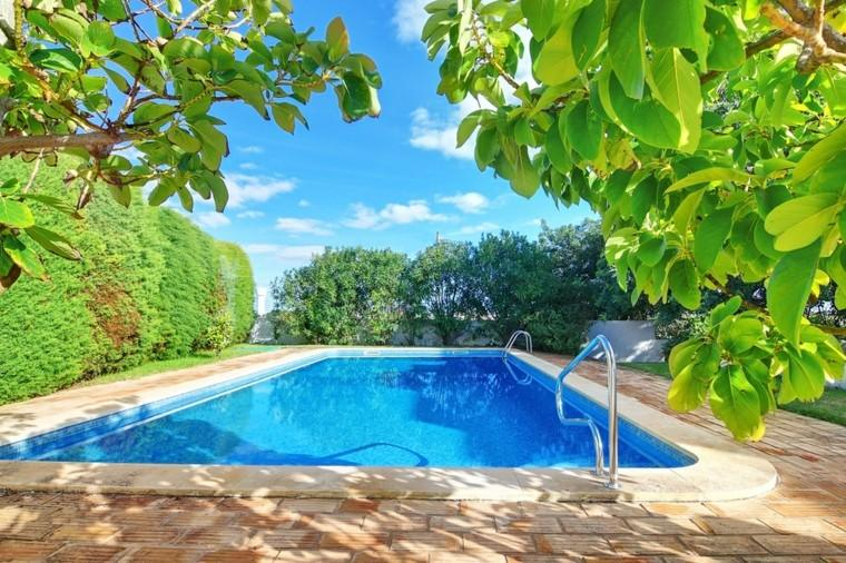 piscinas grandes jardin plantas naturalidad ideas