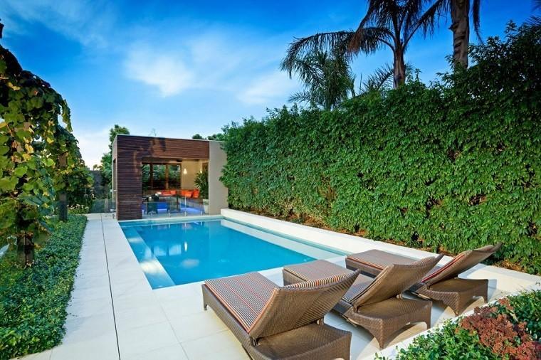 piscinas jardines diseño tumbonas bajas palmeras