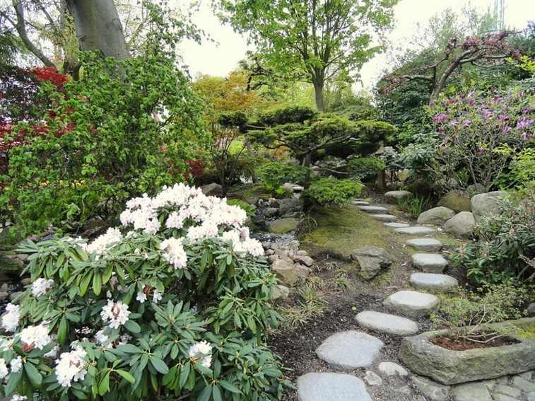 plantas jardin camino piedra nivelado