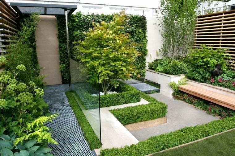 plantas naturales jardin pequeno precioso ideas