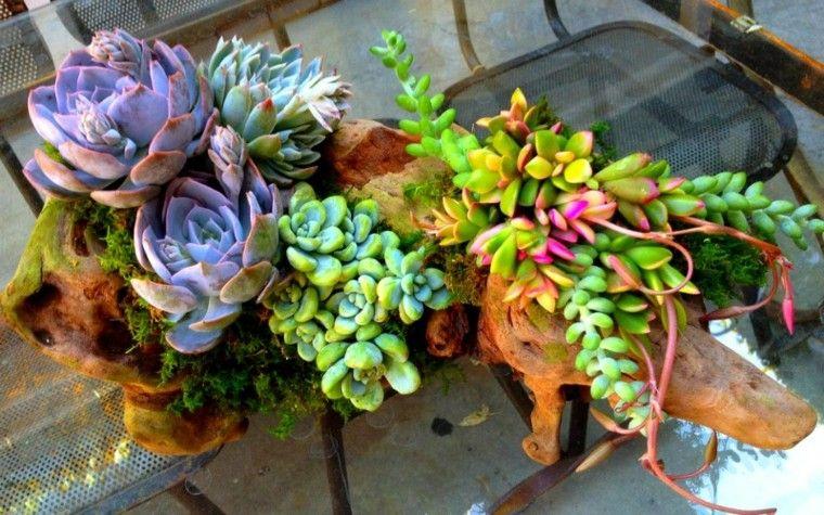 plantas ornamentales jardín bien decorado ideas