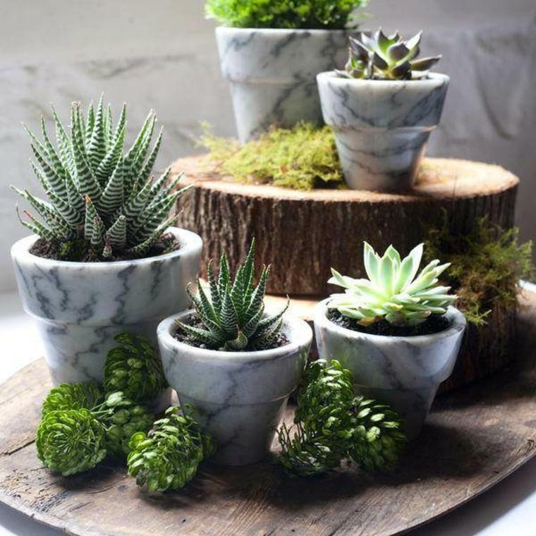 Plantas ornamentales jard n natural ideas preciosas - Macetas originales para plantas ...