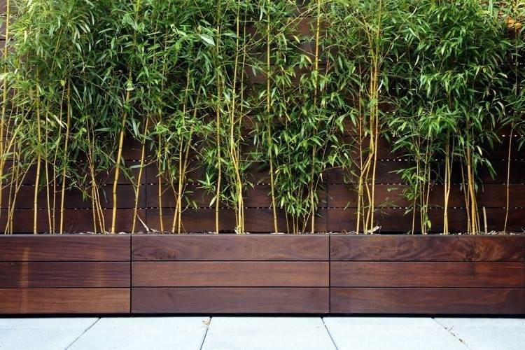 terraza maceteros madera plantas bambu