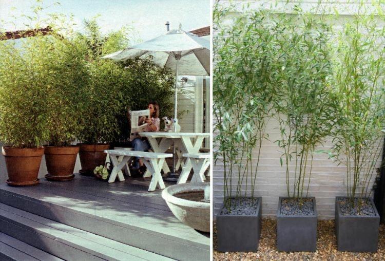 tres maceteros grandes cuadrados bambu