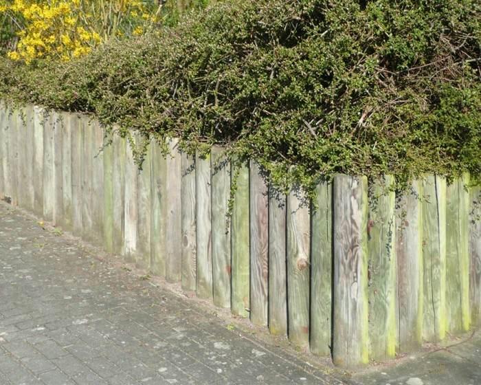 vallas jardin empalizadas troncos verdes