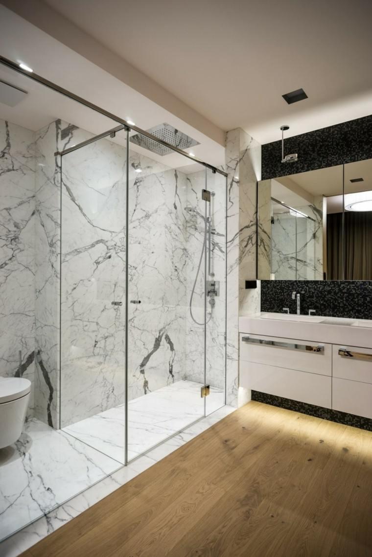 baño espacioso cristal paredes plato