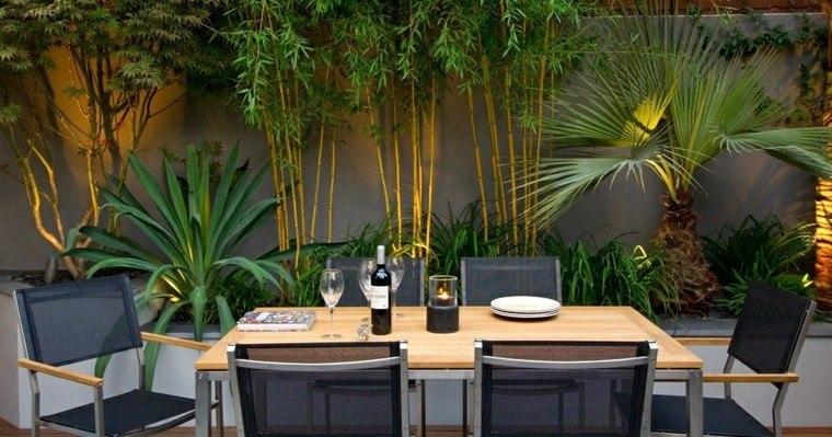 bambu comedor exterior vino luces