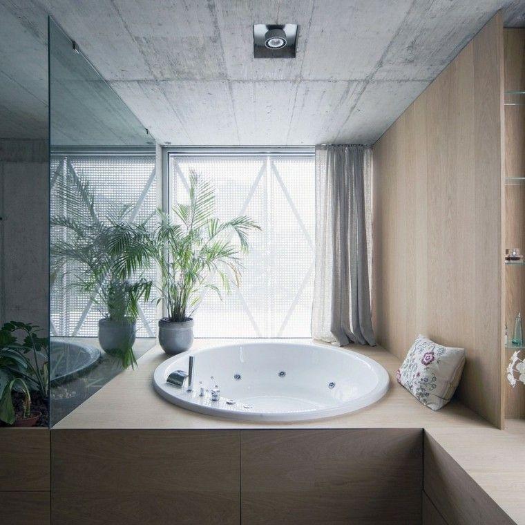 banos estilo minimalista moderno maceta planta jacuzzi ideas