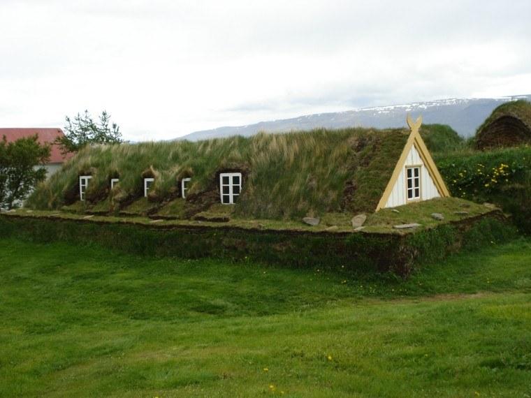 cabaña oculta cesped verde tierra