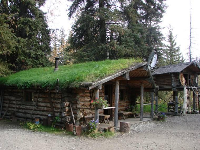 cabañas madera tejados plantas cesped