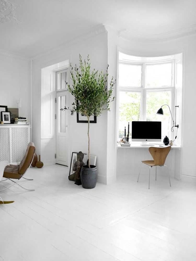 casa blanca escritorio ventana maceta arbol decorativo ideas