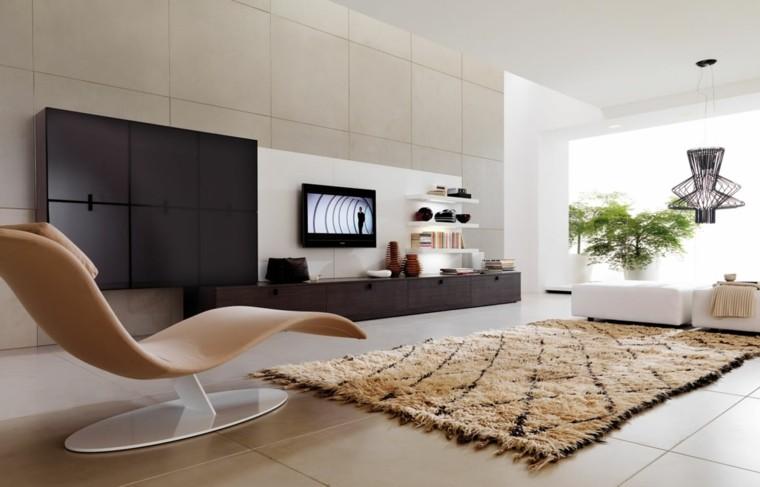 casa moderna elegante plantas marron