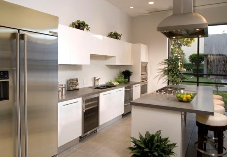 cocina blanca estilo minimalista plantas decorativas ideas