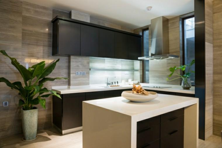 cocinas modernas con isla pequena maceta grande ideas