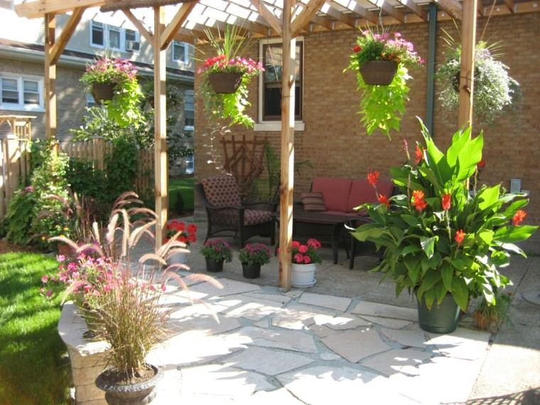 colgantes plantas decorativo espacio cascada