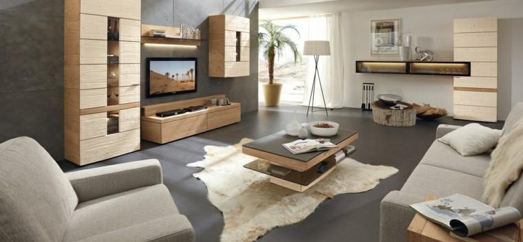 color gris pared salon amplio moderno ideas
