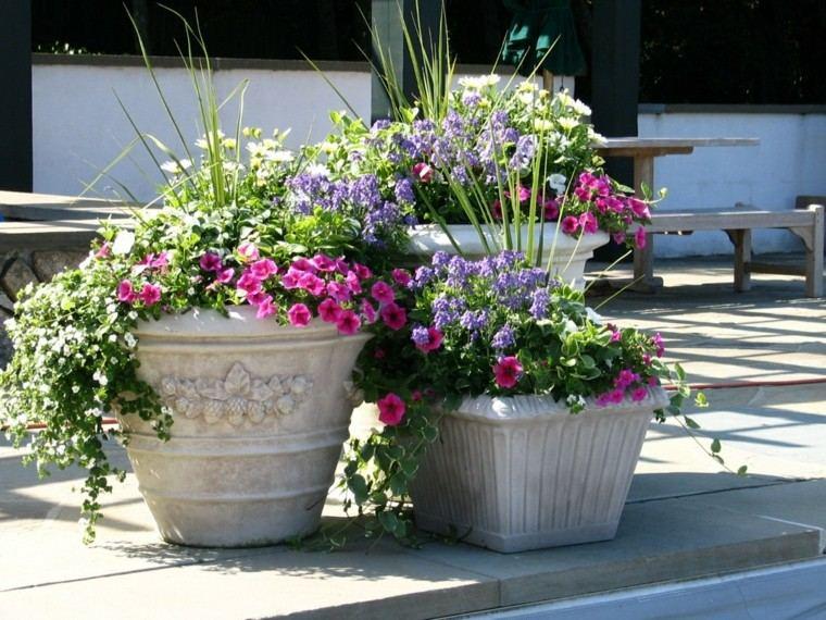 colorido plantas blanco macetas flores