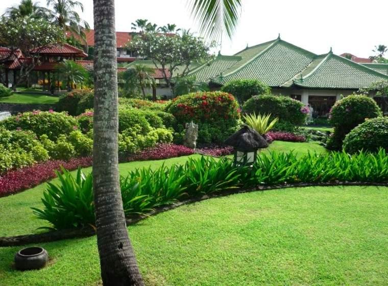 diseño jardines palmera cesped coctero