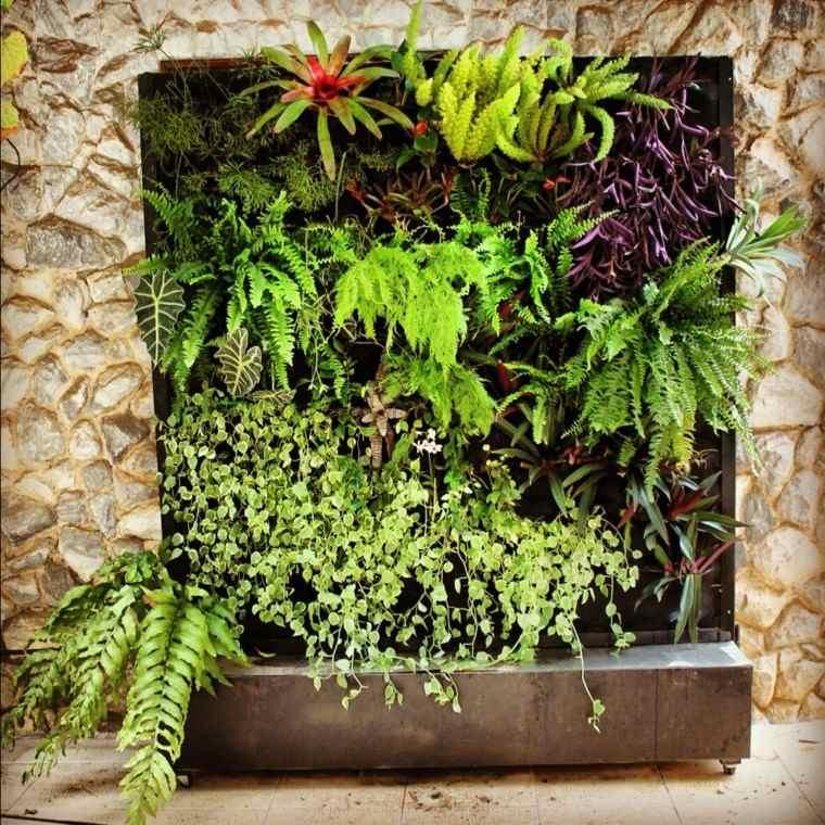 diseño jardines verticales plantas rocas