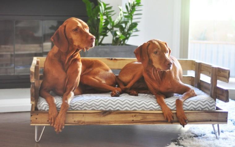 dos perros cama pallets madera