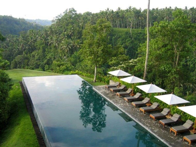 elegant green mountains coconut trees white