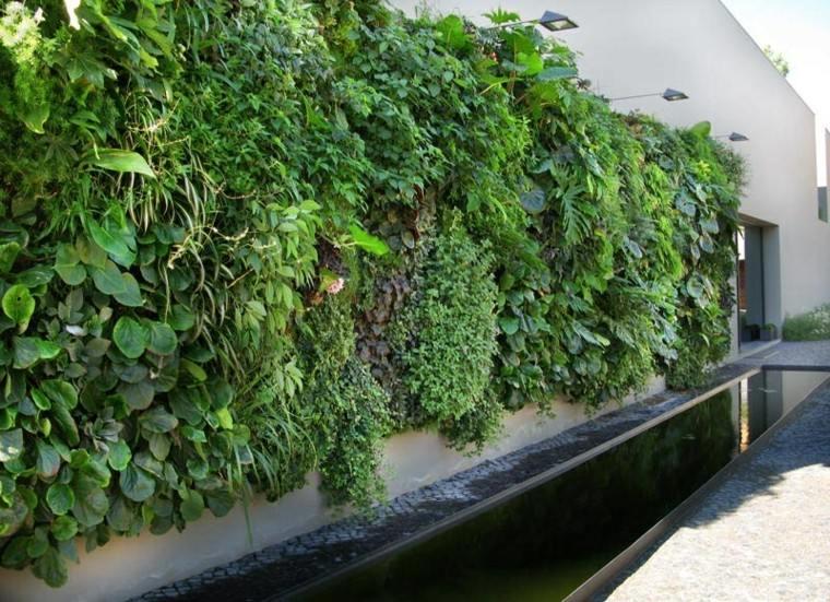 estanque exterior plantas agua lamparas edificio