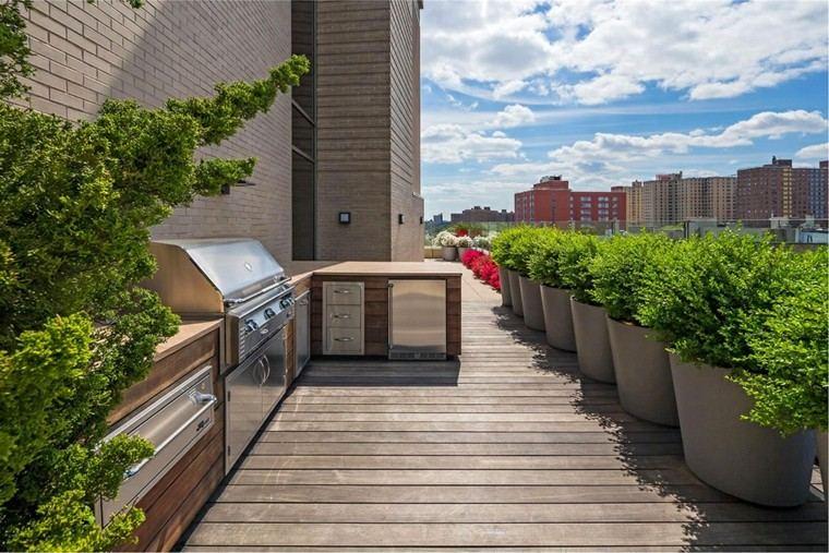 estupenda diseño terraza cocina plantas