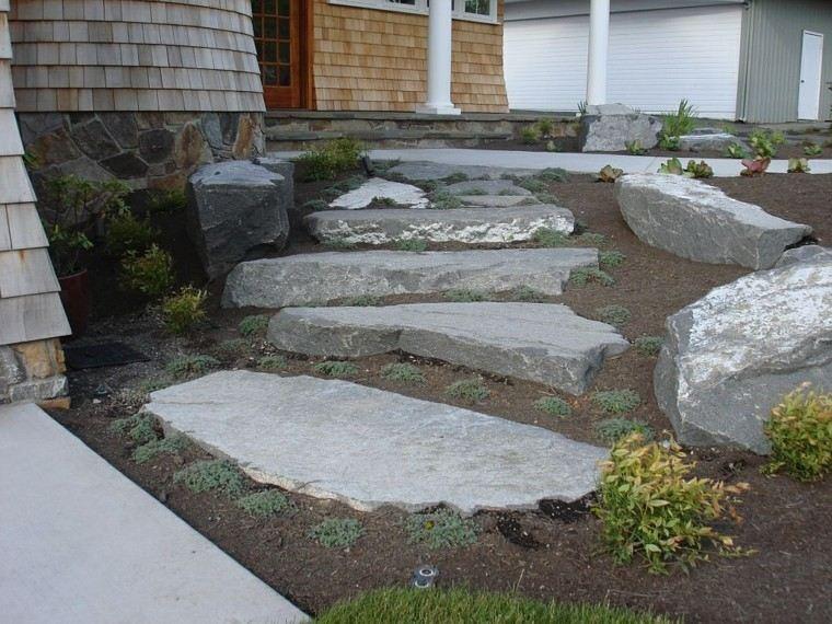 exteriores sendero mantillo tierra natural