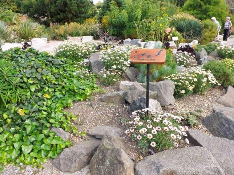 flores canarias islas cartel madera
