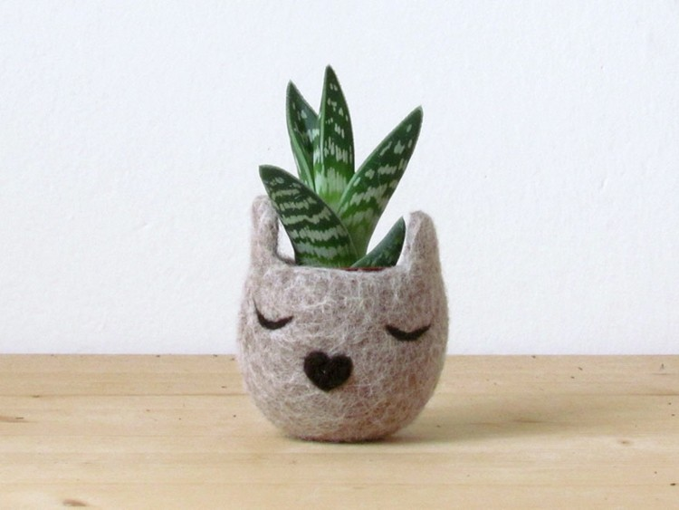 gatito gris nariz corazon