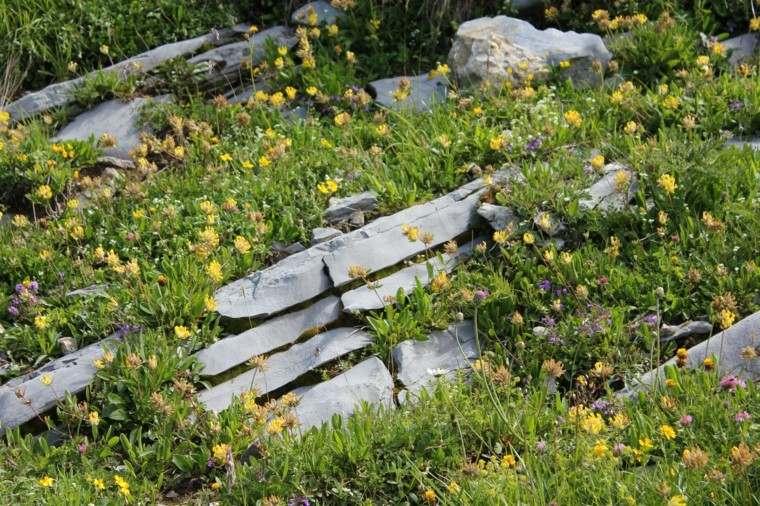 english stones rocks natural yellow