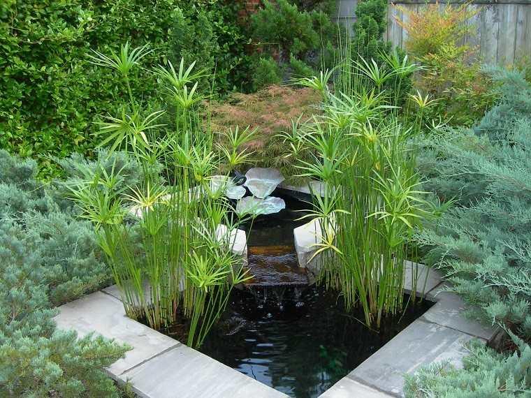 estanque jardin cañas bambu